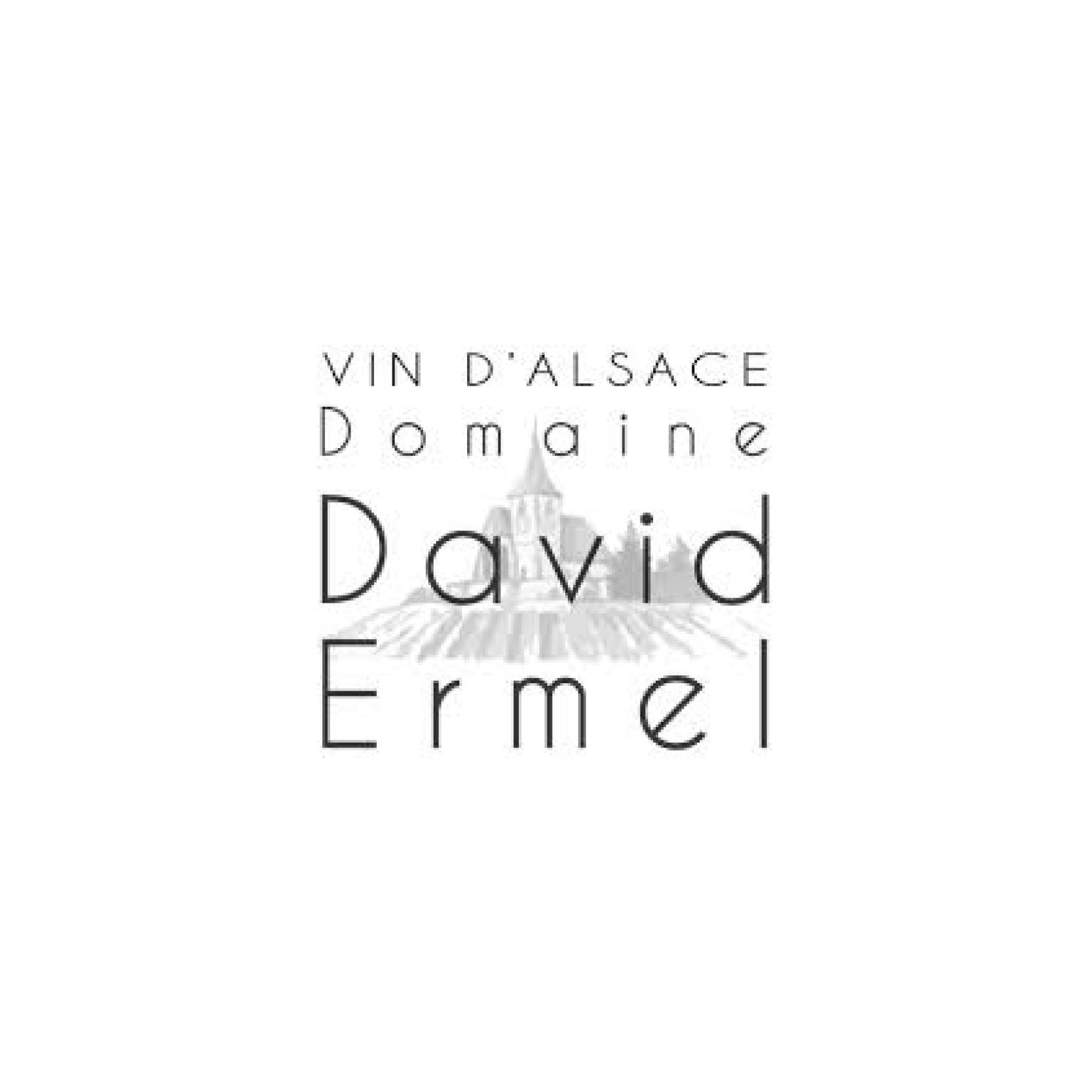 David Ermel